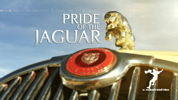 Pride of the Jaguar